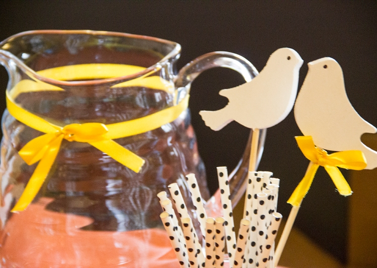 Bird Themed Baby Shower