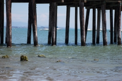 The pier at Capitola. On handfulofsunshine.com